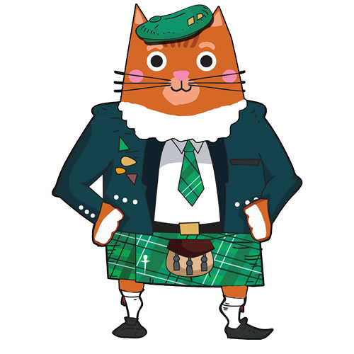 HAmish the Cat Childrens Books